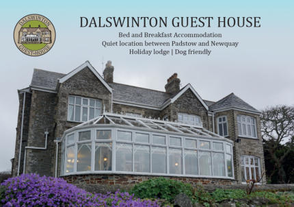Pet freindly bed and breakfast accommodation ideal for Padstow and Newquay Airport